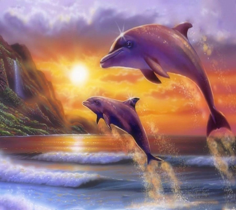 Underwater  Delfine